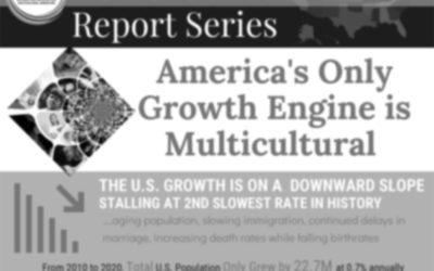 AIMM 2020 Census – Report Series